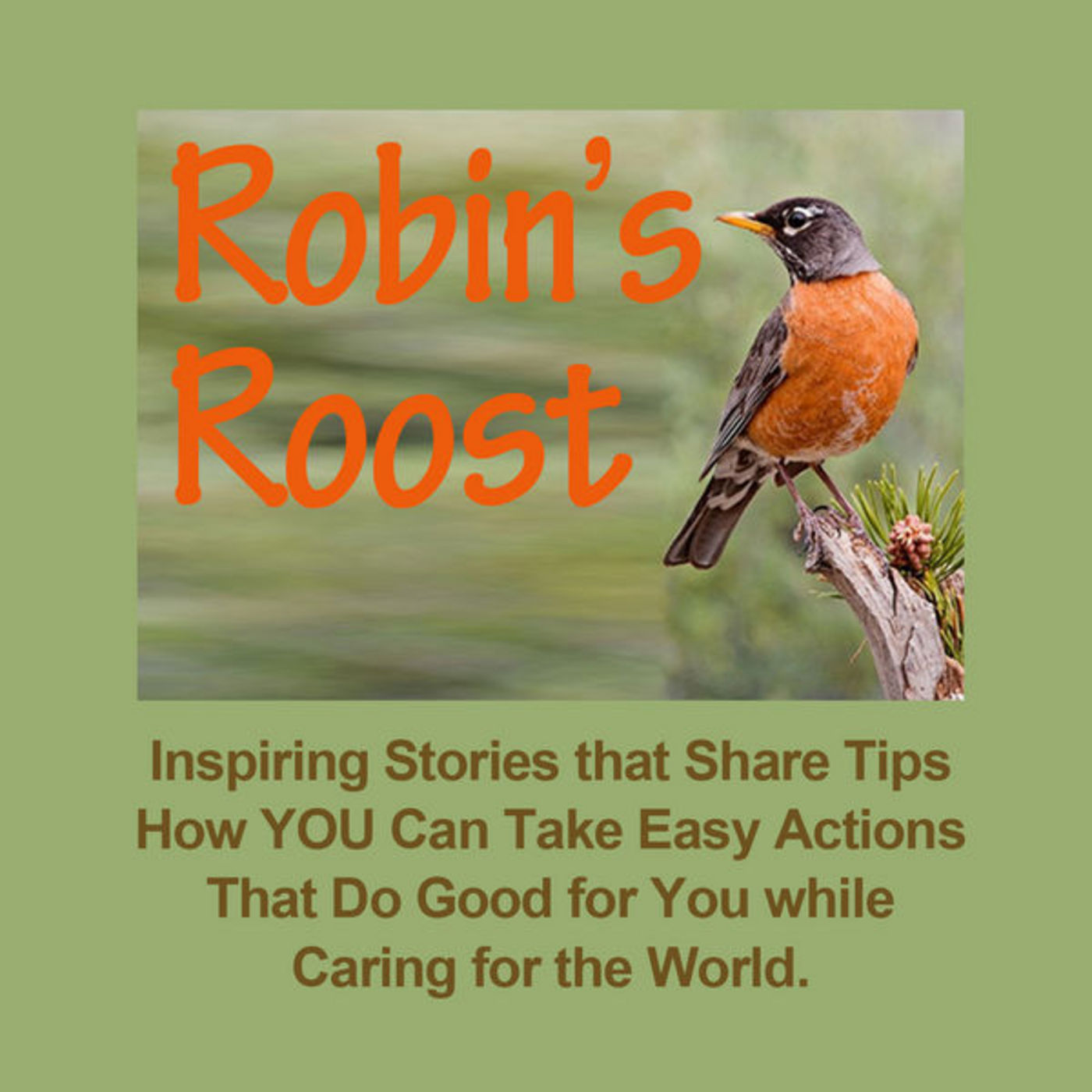 <![CDATA[Robin's Roost: Inspiring Stories Changing Lifes]]>
